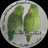 Parrotlet Athens Club
