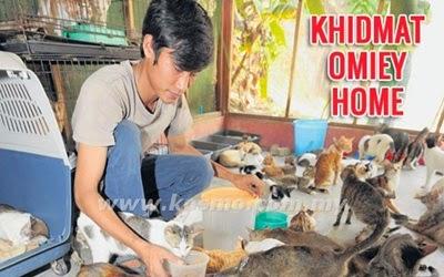 Omiey Home pusat jagaan kucing