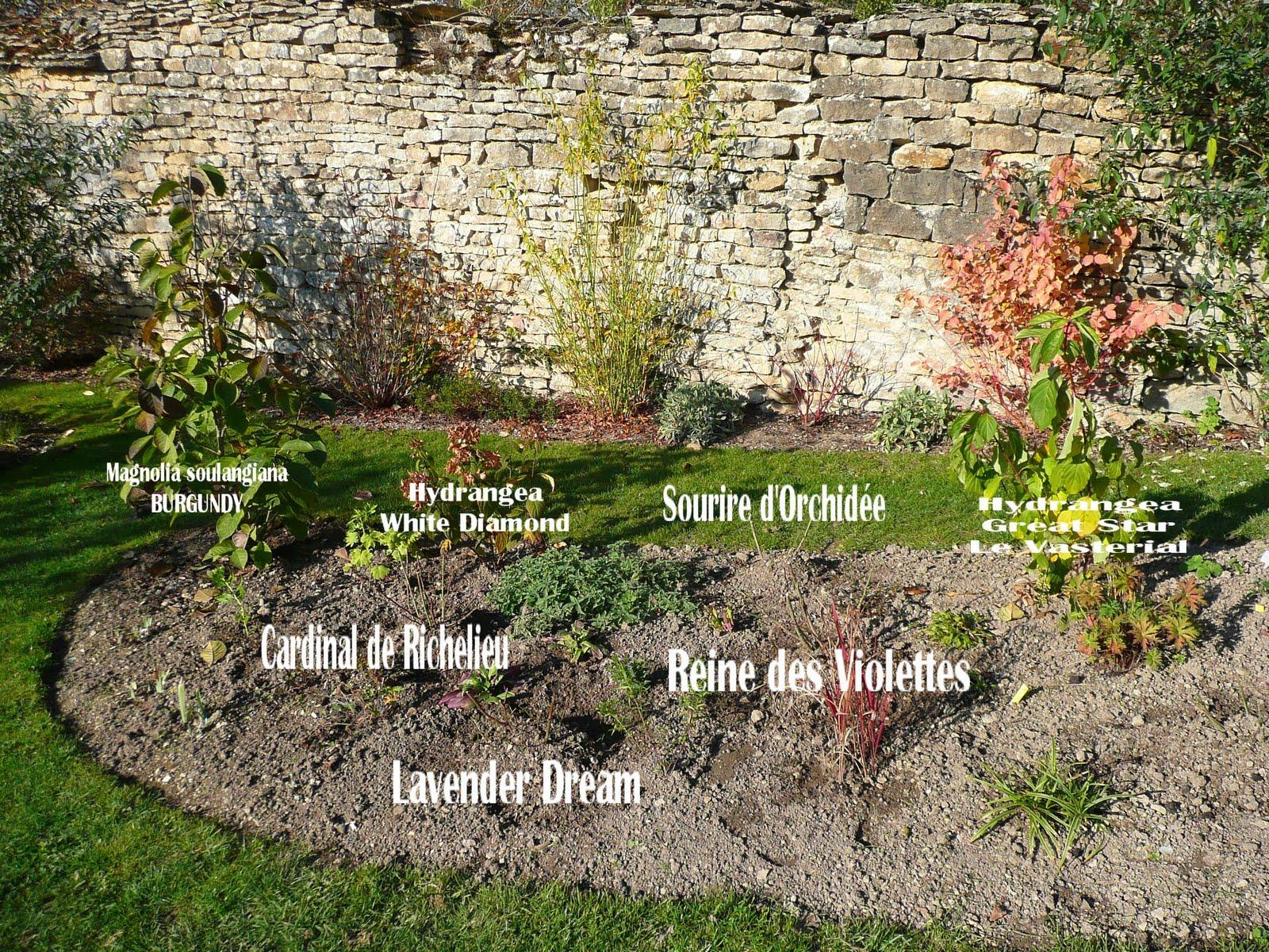 Amnager un petit jardin carr elegant conception et for Amenager un petit jardin carre
