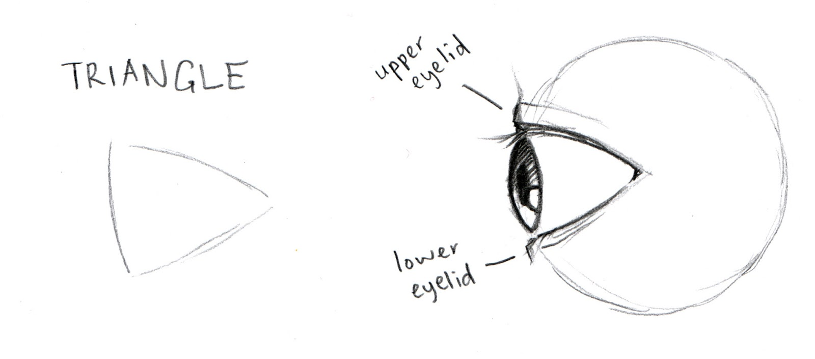 Side View Eye Drawing Draw The Sides of The Eye