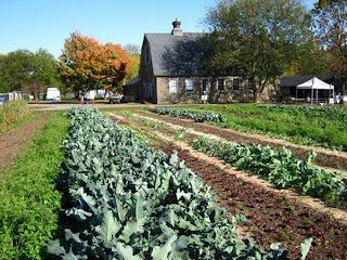 farm museum,farming