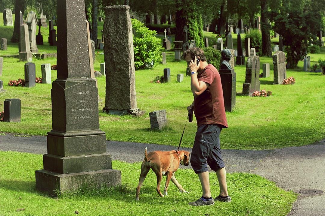 Cmentarz Oslo Norwegia