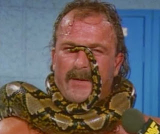 WWF / WWE - SUMMERSLAM 1990: Jake The Snake had a snake on his face