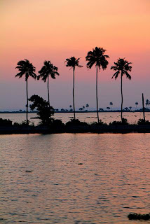 Kerala (Best Honeymoon Destinations In India) 5