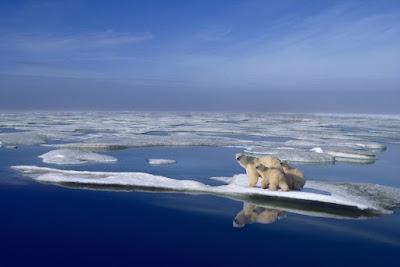 El cambio Climático nos interesa a todos