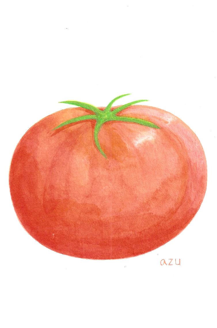 トマトの画像 p1_5