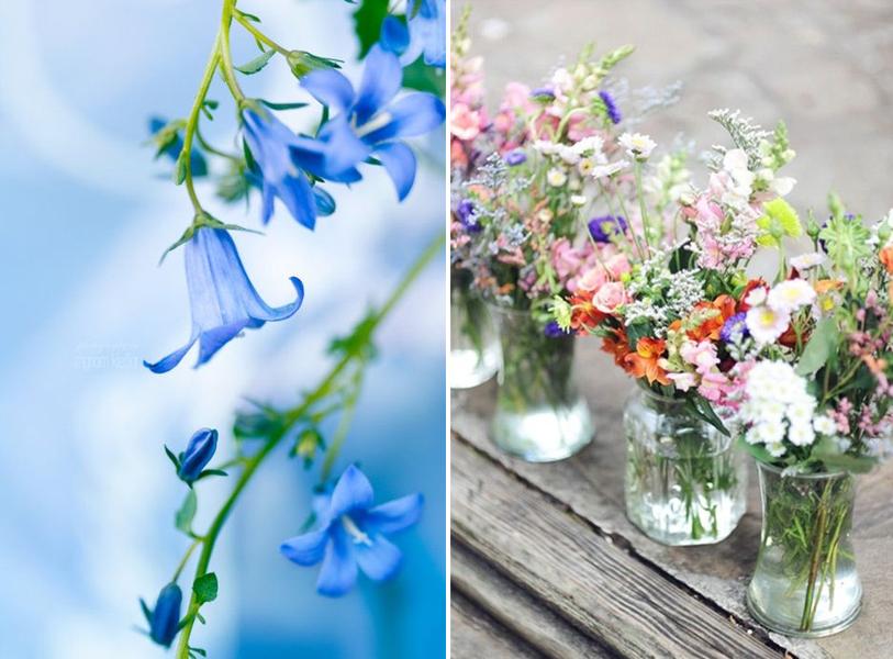 häät siniset kukat hääkimppu häiden suunnittelu luonnonkukat kattauksessa