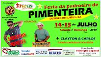 Festa da Padroeira 2018