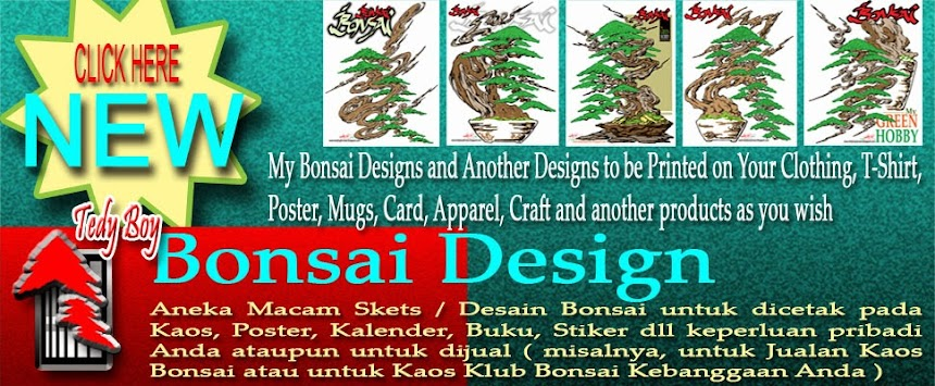 bonsai designs of tedy boy