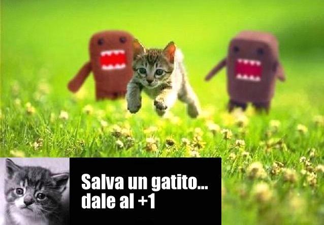 Salva un gatito dándole al +1