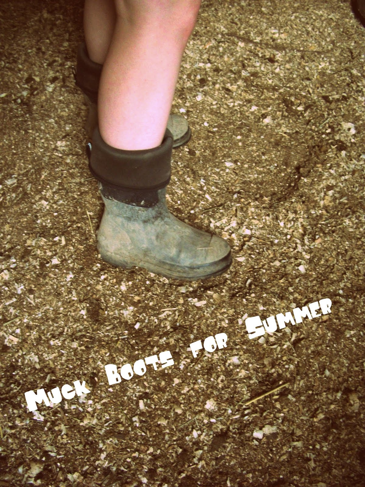 The Life of a Novice!: Farm Friday - Manure