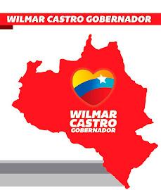 Gobierno de Portuguesa