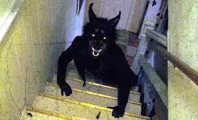 ataque de monstro, história de terror, aterrorizante, pé grande, bruxa, demônio, fera, besta, medo, bigfoot, lago, dragão