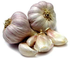 Bawang Putih Untuk Mengobati Sakit Gigi