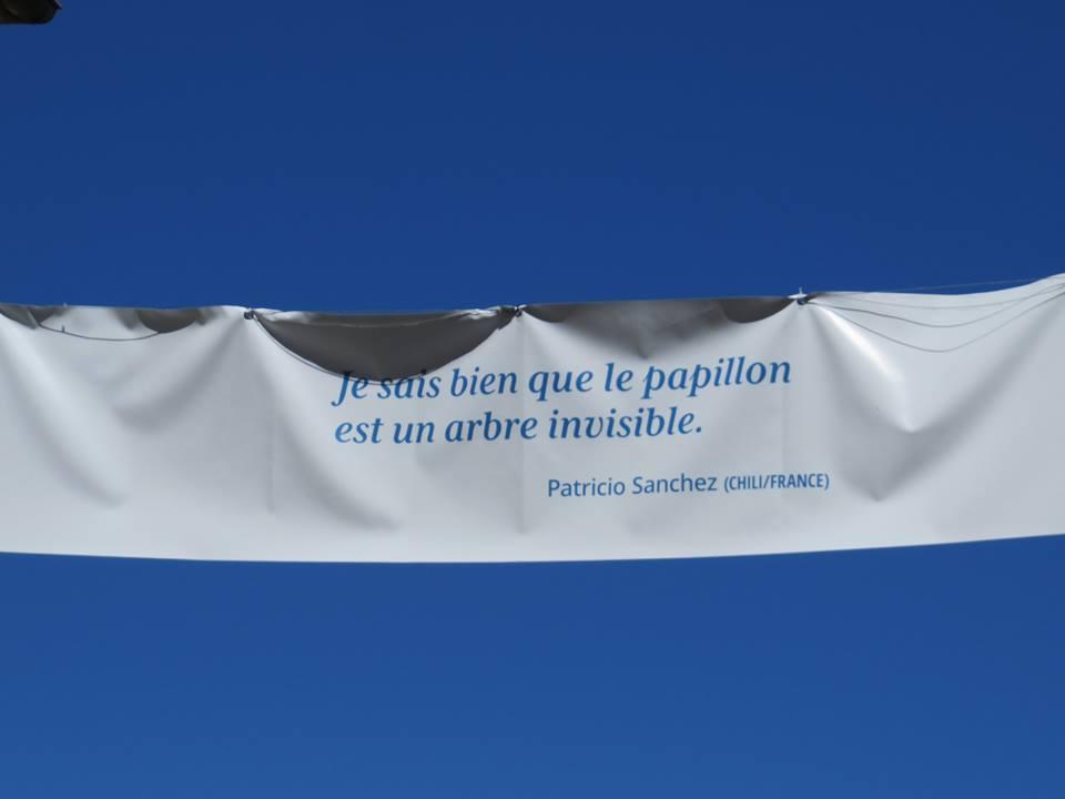 Festival Voix Vives 2016- France- Patricio SANCHEZ-ROJAS