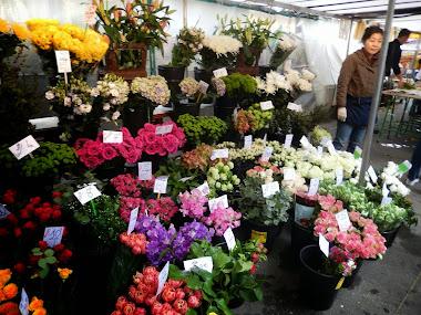 Bastille Market Paris