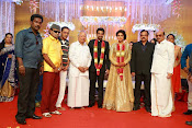 Amala paul vijay reception-thumbnail-58