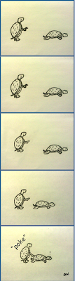 criters slow poke turtle