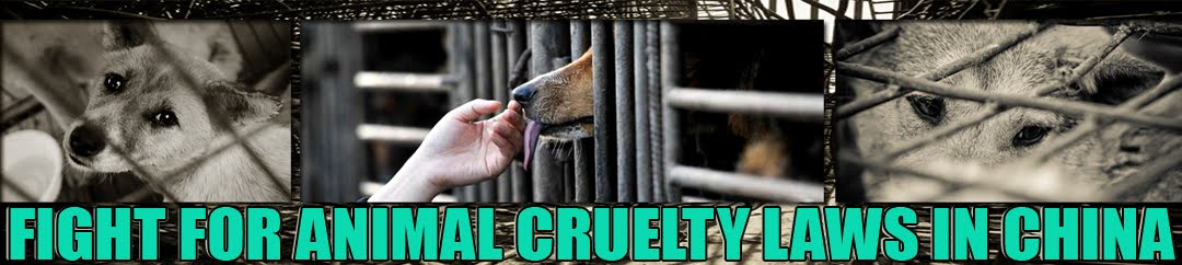 Fight for Animal Cruelty Laws in China (FACLC)