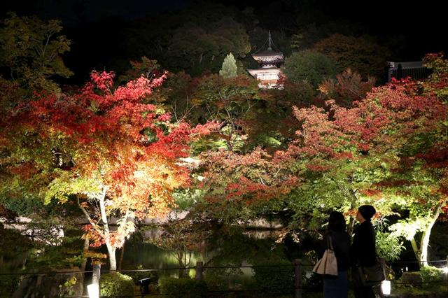 Eikando Zenrin-ji, Kyoto: The Temple of Maple Leaves