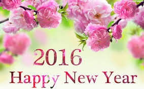 Pictures of New Year 2016