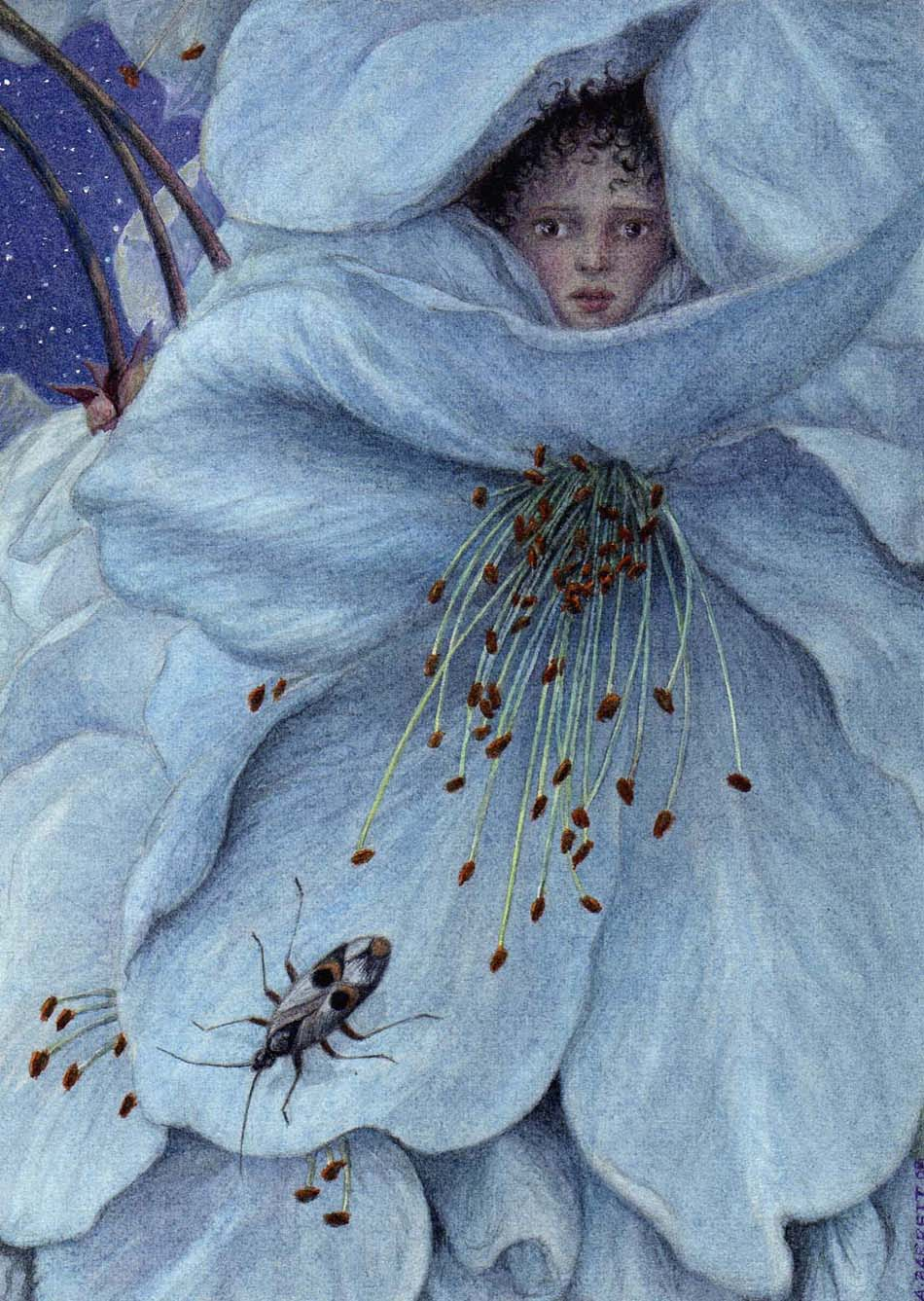 Angela Barrett Net Worth