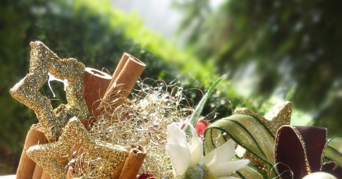 Il giardino incantato di alice la mia salzburg box una