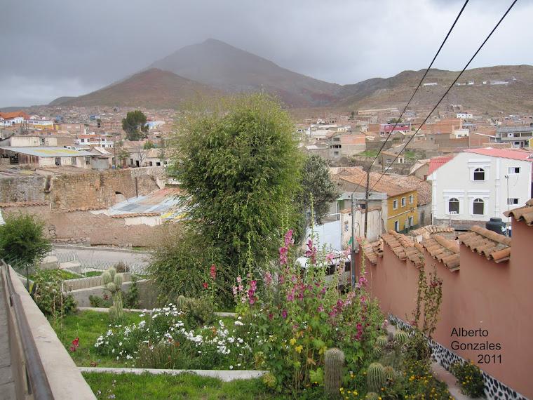 Imágenes Potosí- Zona arco Cobija