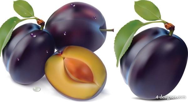 prune seed