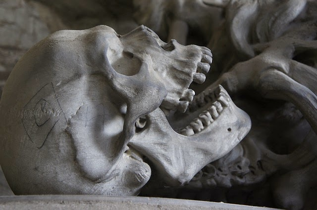 Giant Skeletons Unearthed