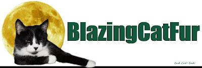 Blazing Cat Fur