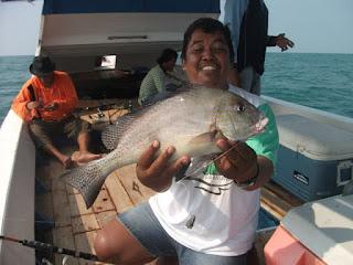 Ikan Kaci-kaci,  Nasi Uduk  Buchory Bonus ikan Kurcaci
