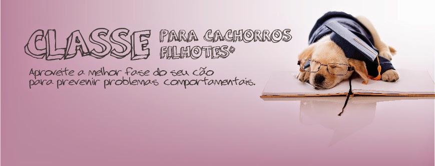 EMMANUELLE MORAES - EDUCADORA CANINA