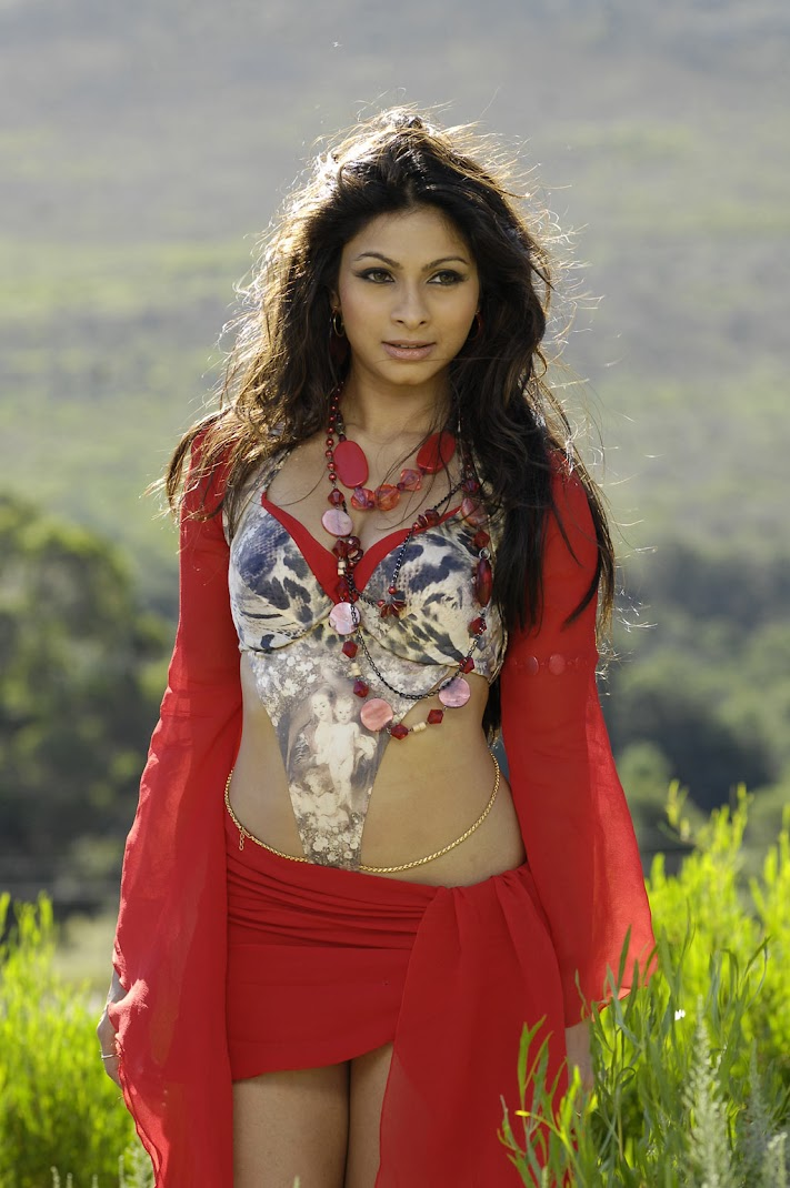 BackTack - Tanisha Mukherjee Hot Stills from South