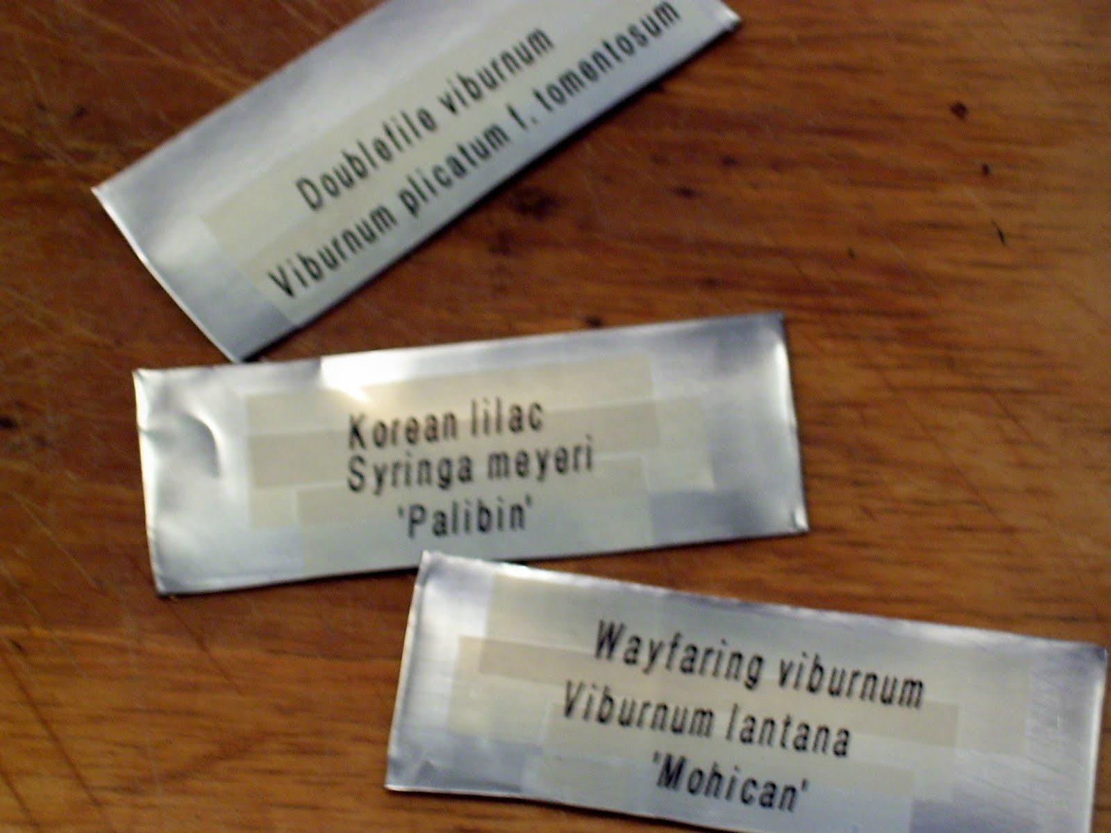 Talking to Plants: Garden Plant Labels