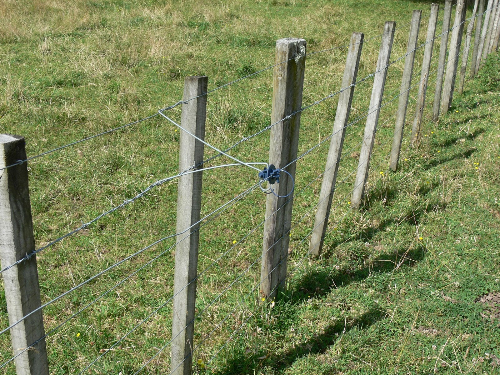 woolshed 1 new zealand farming electric power fencing glossary