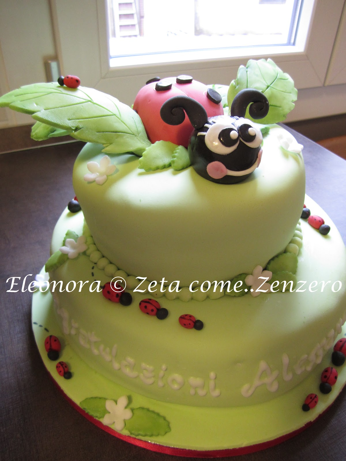 Zeta come zenzero torte decorate di febbraio e la moda for Come leggere i piani del cantiere