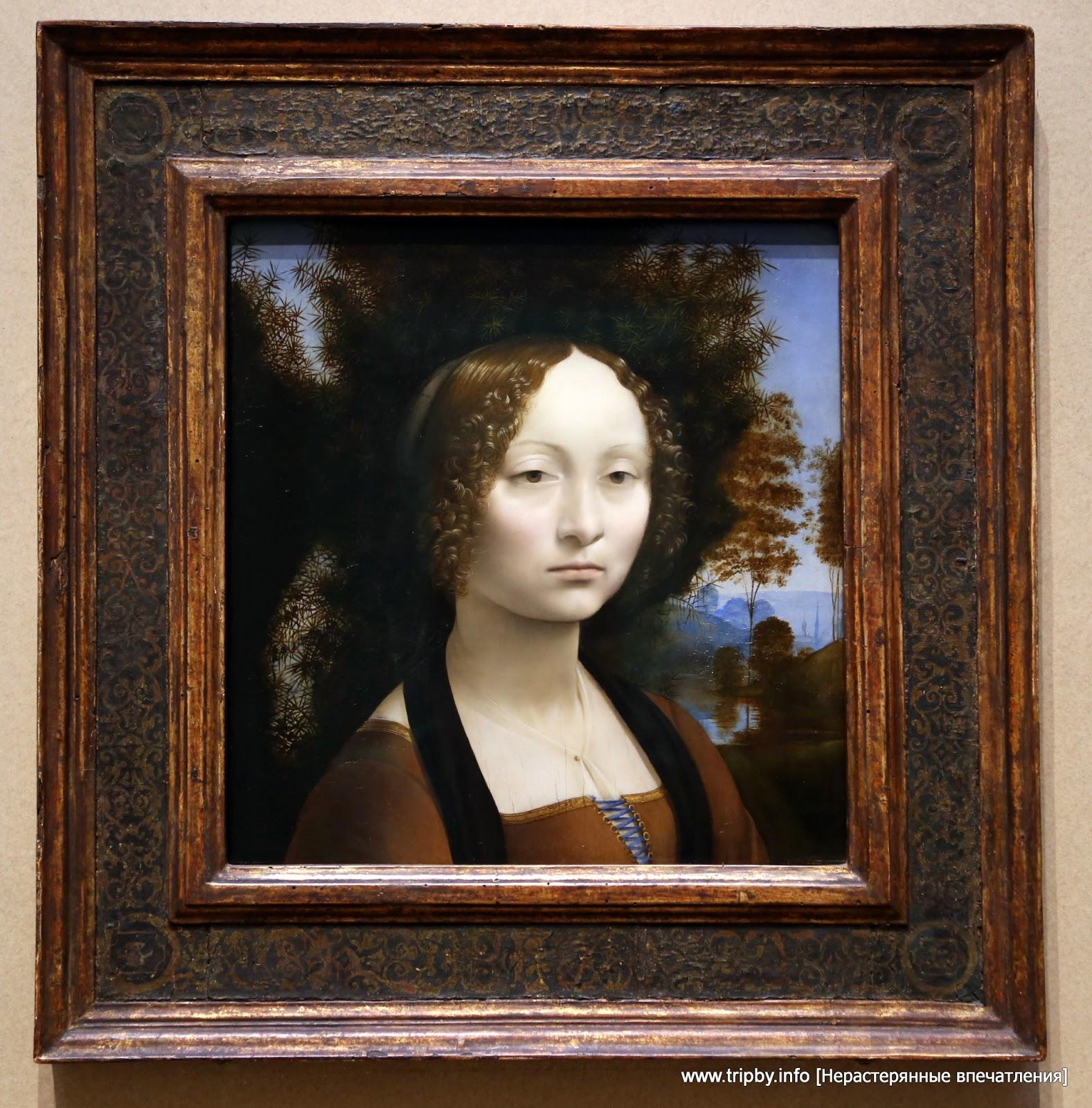 Джиневра Бенчи. Леонардо да Винчи || Leonardo da Vinci Florentine, 1452 - 1519 Ginevra de' Benci