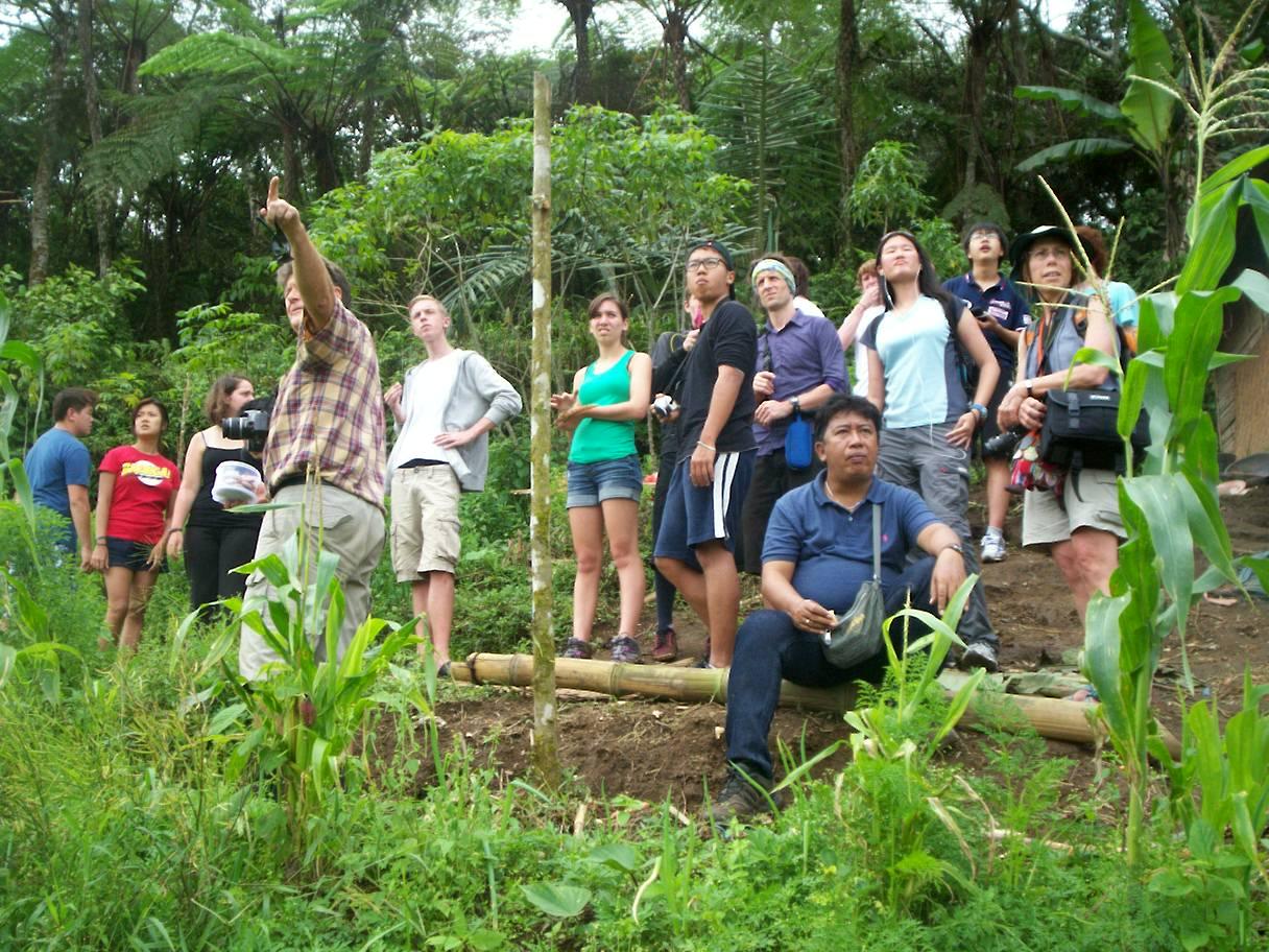international student tour organize