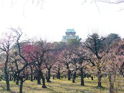 梅と大阪城