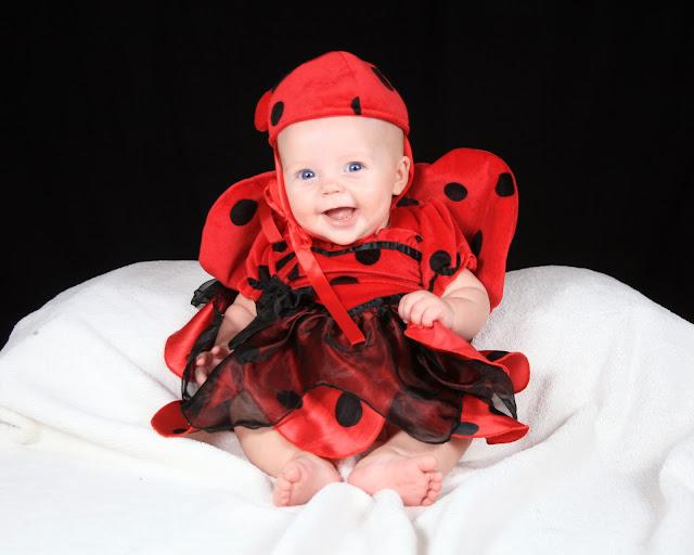 Halloween costume, ladybug costume, infant costume, infant ladybug costume, halloween,