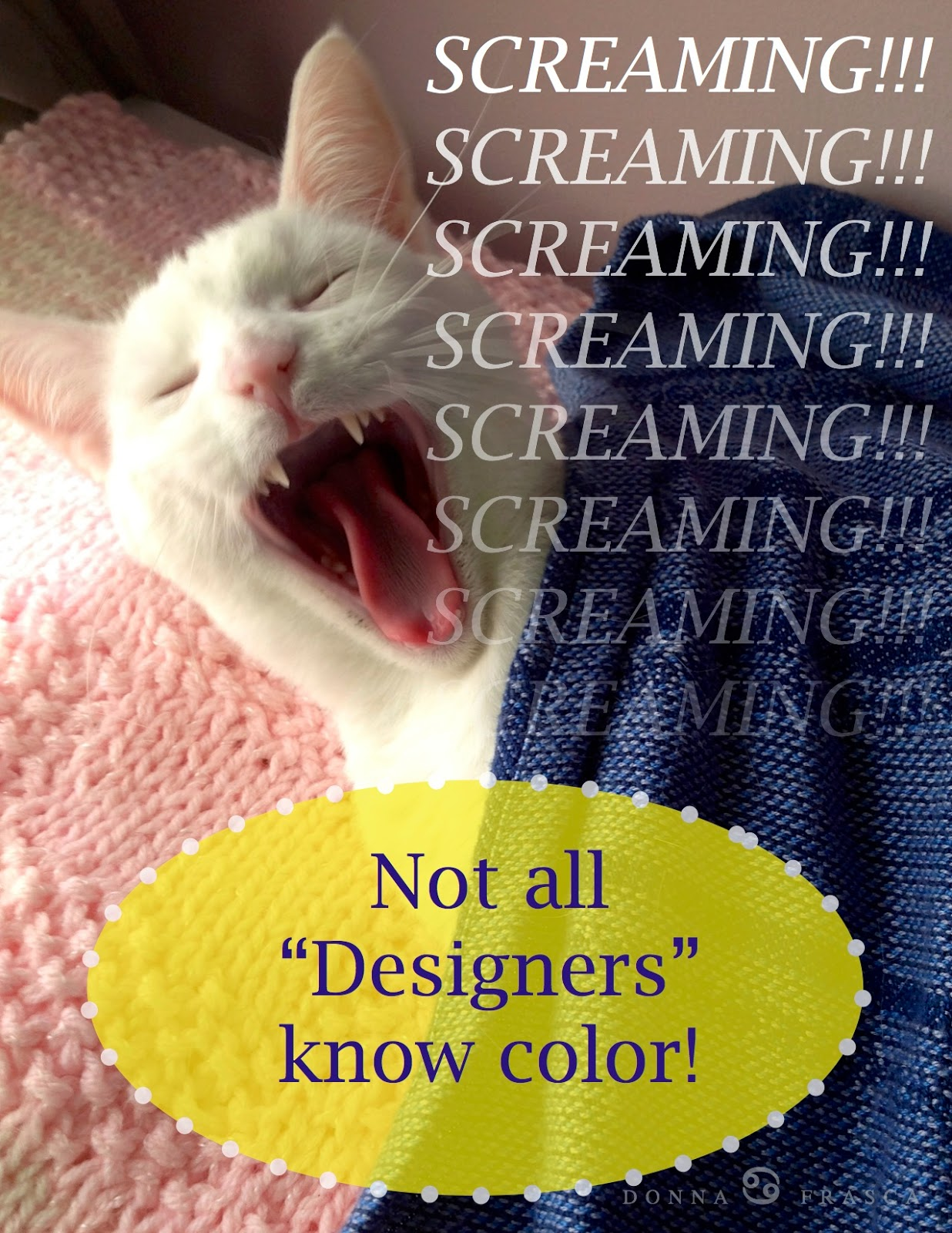 A Color Specialist in Charlotte: Oh How Some Paint Colors Burn My Tail!!!!