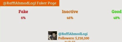 raffi ahmad fake followers