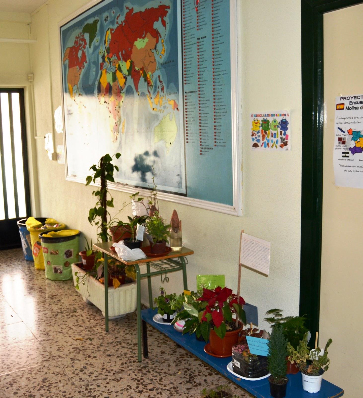 Actuaciones medioambientales en un entorno urbano viveros for Viveros en murcia