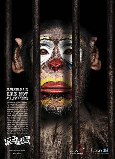 Green Pear Diaries, publicidad que incomoda, payasos, circo, animales