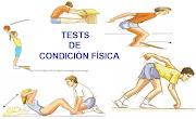 BAREMOS TESTS CF
