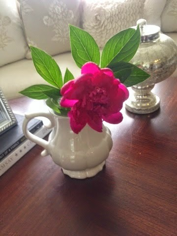 Delay Peony blooming for 4 Weeks!