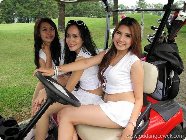 Caddy Golf Seksi