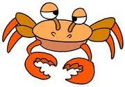 Crabul, gazda intermediara a parazitului Paragonimus westermani