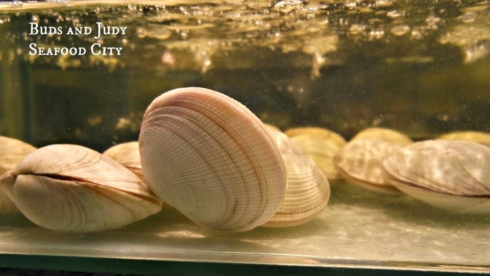 Seafood City. Seafood Restaurant in Cebu City, clams